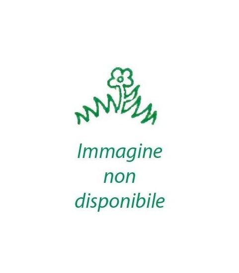 BAGNOSCHIUMA SOLE DEL MEDITERRANEO 100 ML
